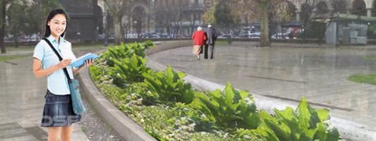 Piazza Vittorio Project. Ecco i renderings