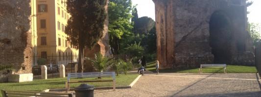 foto 3 (2)