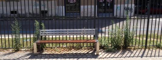 Non rassegnamoci alla morte del Parco di Via Statilia